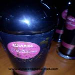 Vino Jerez Vinagre Balsamico al Pedro Ximénez 25 cl. Williams Humbert